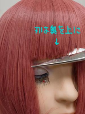 cut9.jpg